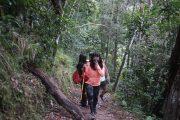Private Trip Desa Waerebo 2 Hari 1 Malam, open trip waerebo, desa waerebo, waerebo village, waerebo tour 2018, paket wisata wae rebo, backpacker ke waerebo, spiderweb ricefields, desa kerucut waerebo.