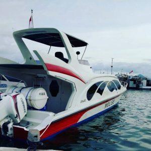 One Day Trip Sailing Komodo Labuan Bajo, daily trip to komodo,daily trip cruise komodo,day tripto rinca island from labuan bajo, padar islandday trip, komodo day tripprice, komodoislanddaytours from bali, how to get to padar island, padar island tour.